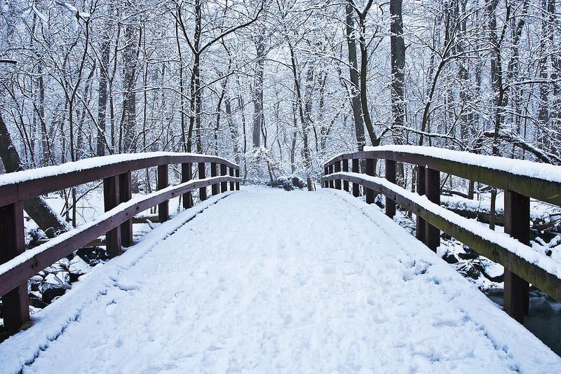 tb-winter